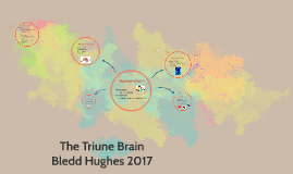 Copy of The Triune brain