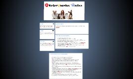 Veterinarias Online