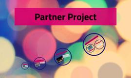 Partner Project