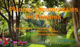 Copy of Plantas Ornamentales de Panama