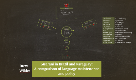 Guarani in Brazil and Paraguay: