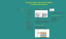 Principios Básicos de Gerencia Pública y Comunicación Efecti