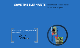 Save the elephants!