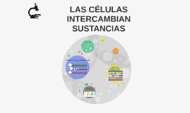 LAS CÉLULAS INTERCAMBIAN SUSTANCIAS