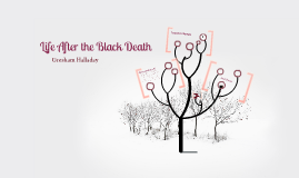 Life After the Black Death