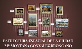 Copy of ESTRUCTURA ESPACIAL DE LA CIUDAD