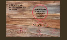 """Filière forêt bois : les utilisations du bois (première transformation). Document de travail BTS TC """"Produits issus de la filière forêt bois"""""""