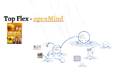 Top Flex - openMind