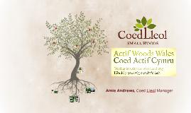 Actif Woods Wales - Green Health in Practice