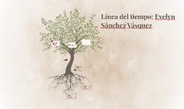 Línea del tiempo: Evelyn Sánchez Vásquez