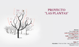 PROYECTO: LAS PLANTAS