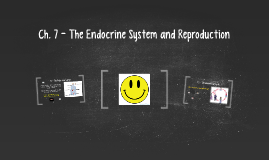 Ch. 7 - The Endocrine System and Reproduction
