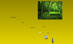 ict: oerbossen
