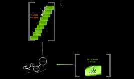 Copy of Herbalife