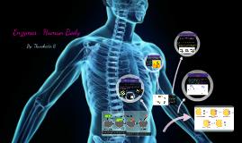 Enzymes- Human Body