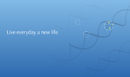Live everyday a new life