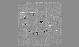 Copy of PETER EISENMAN
