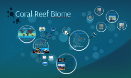 Coral Reef Biome: Eco-Friendly House Plan
