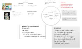 Copy of Nitel Veriler