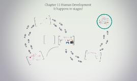 Chapter 11 Human Development