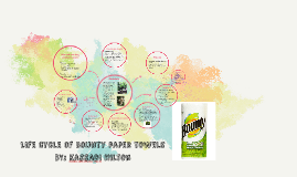 Life cycle of bounty paper towels