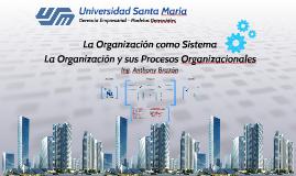 Copia de La Organización como Sistema y sus Procesos Organizacionales