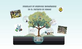 Copy of reciclaje de residuos inorgánicos en el distrito de comas
