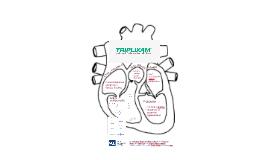 Triplixam poster