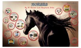 Copy of Horses