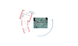 Silicatos, Zeolitas y Óxidos