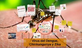 Virus del Dengue, Chinkungunya y Zika