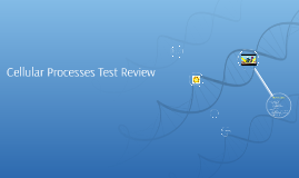 RNA test review