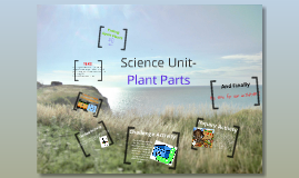 Science Unit