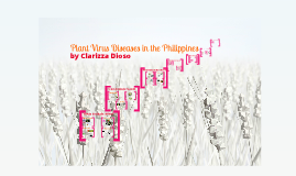 Copy of Plant virus diseases in the Philippines