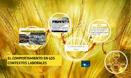 Copy of EL COMPORTAMIENTO EN LOS CONTEXTOS LABORALES