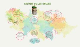 ESTUDIO DE LOS SUELOS