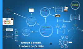 Chapitre 1 : Notion d'entité, contrôle de l'entreprise (2015)