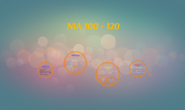 Copy of NIA 100 - 120