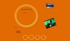 TALLER DE PREZI
