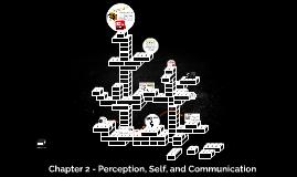 Chapter 2 - Perception, Self, and Communication