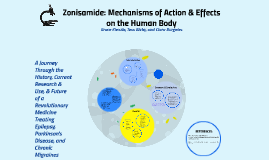 Zonisamide: Mechanisms of Action & Effects on the Human Body