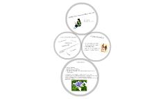 Stratégia és üzleti tervezés szeminárium - értékelésem