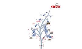 Apresentação CESUSC