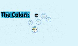 Copy of The Colon