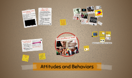 Attitudes and Behaviors