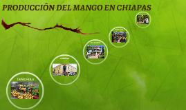 PRODUCCIÓN DEL MANGO EN CHIAPAS