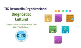 TIG Desarrollo Organizacional