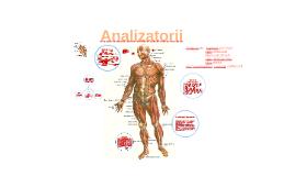 Copy of Analizatorii