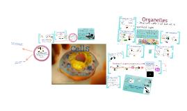 Cells & Organelles