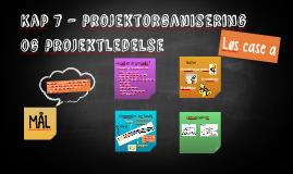Kap 7 - projektorganisering og projektledelse
